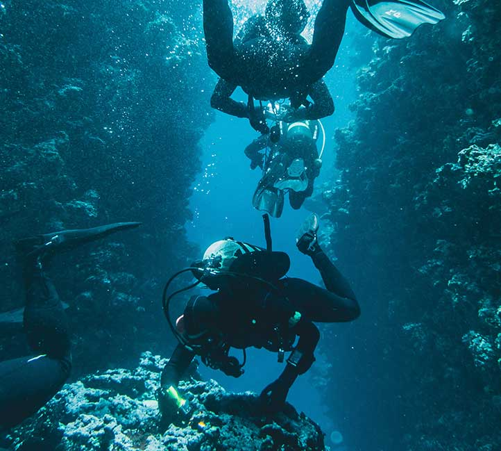 Diving in Barbados