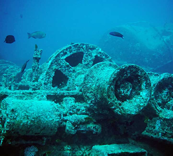 Diving near a shipwreck in Barbados