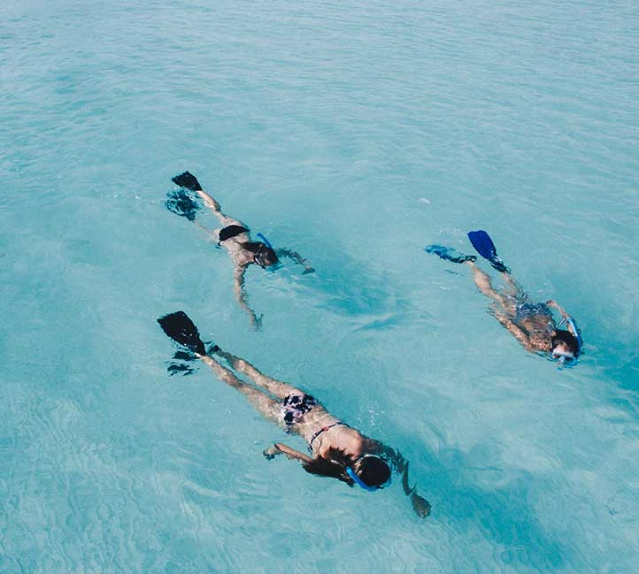 Snorkeling in Barbados Group