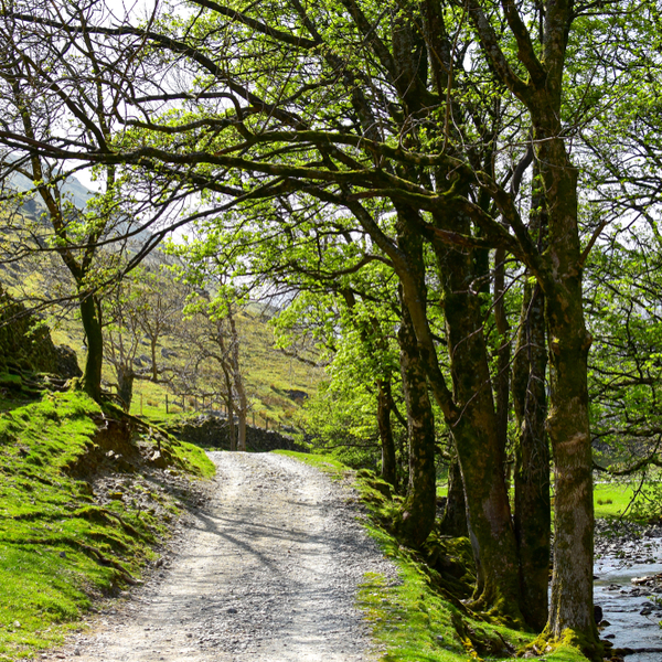 lake district cycle route