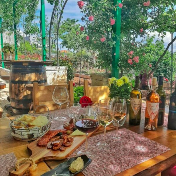 lunch at a vineyard in split
