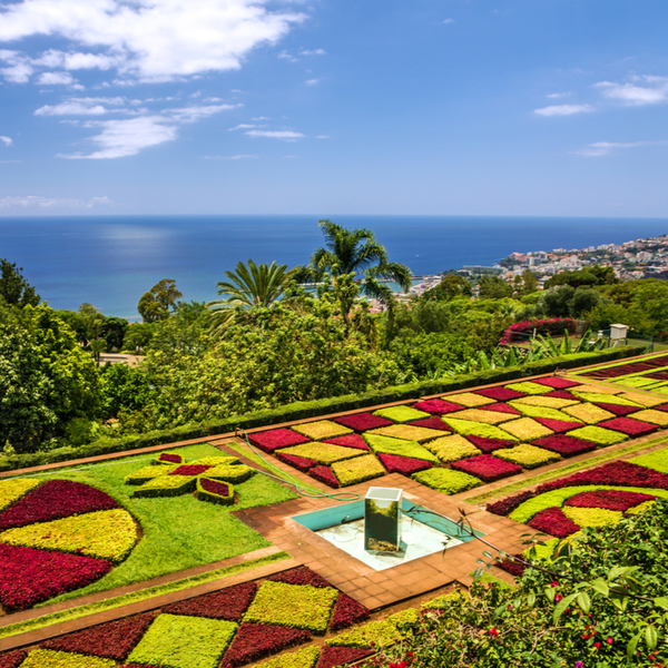 view over sea from madeira landscaped gardens
