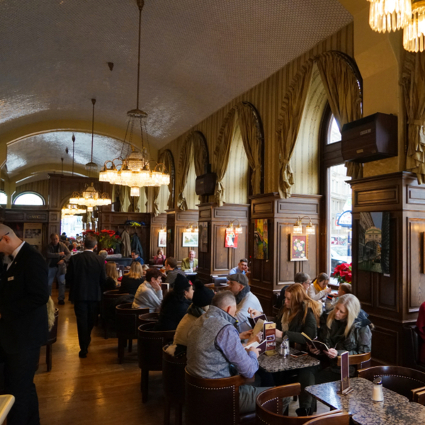 interior of famous coffee house in vienna