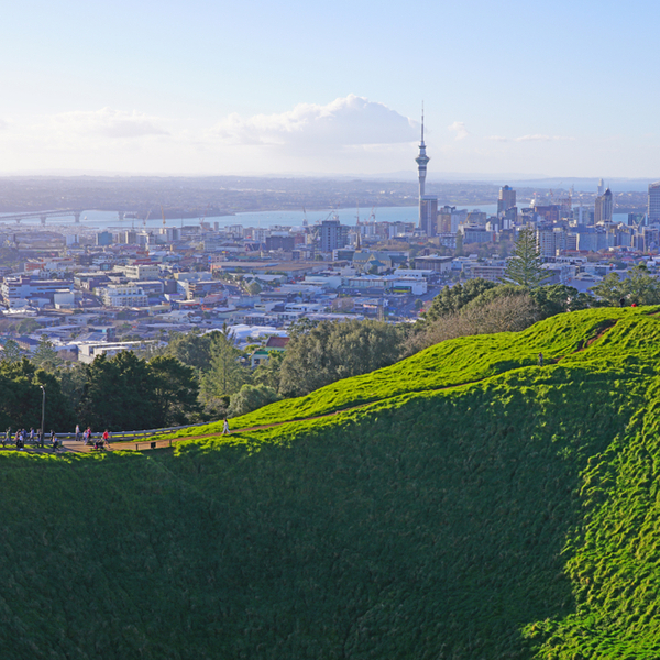view of auckland from Maungawhau peak