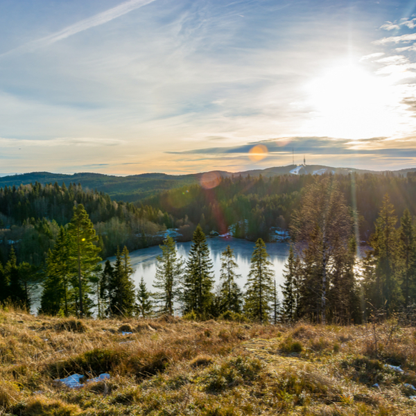 hills and lake at forest near oslo