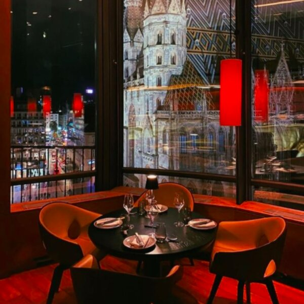 restaurant with cathedral view in vienna