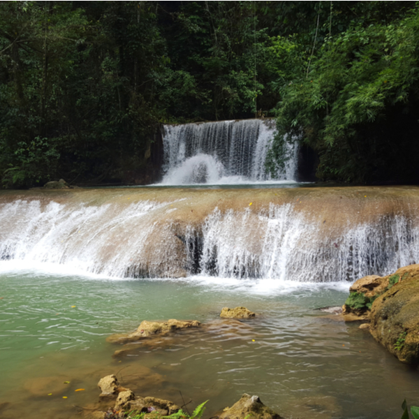 waterfall in jamaican forest