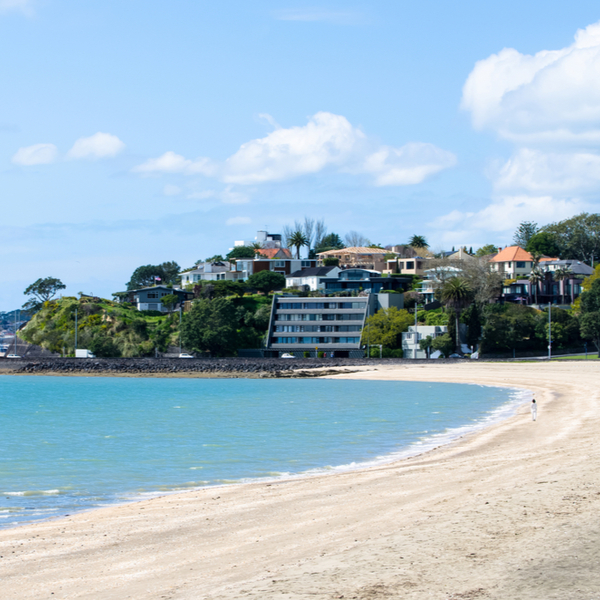 beach at mission bay in auckland