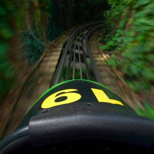 cool runnings style bobsled ride in jamaica