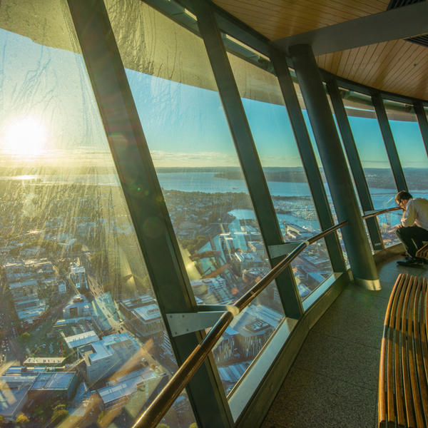 observation deck at auckland's sky tower