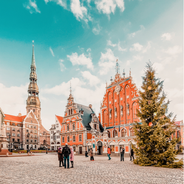 traditional christmas tree in old town square riga