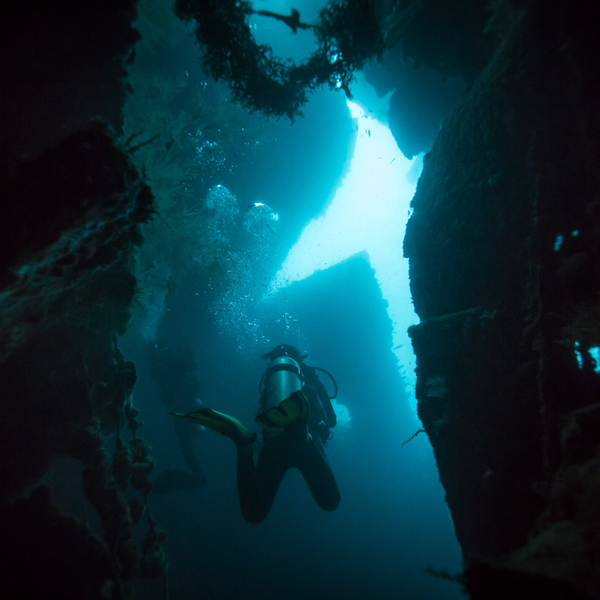 diving at the ss dori wreck in azores
