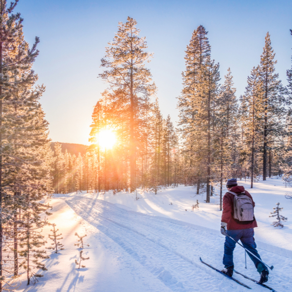 cross country skiing in lapland
