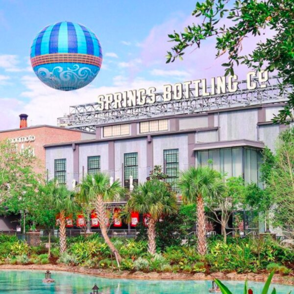 palm trees at disney springs shopping mall